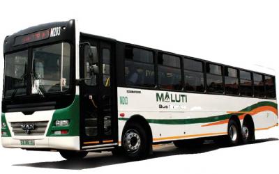 Maluti Bus Branding